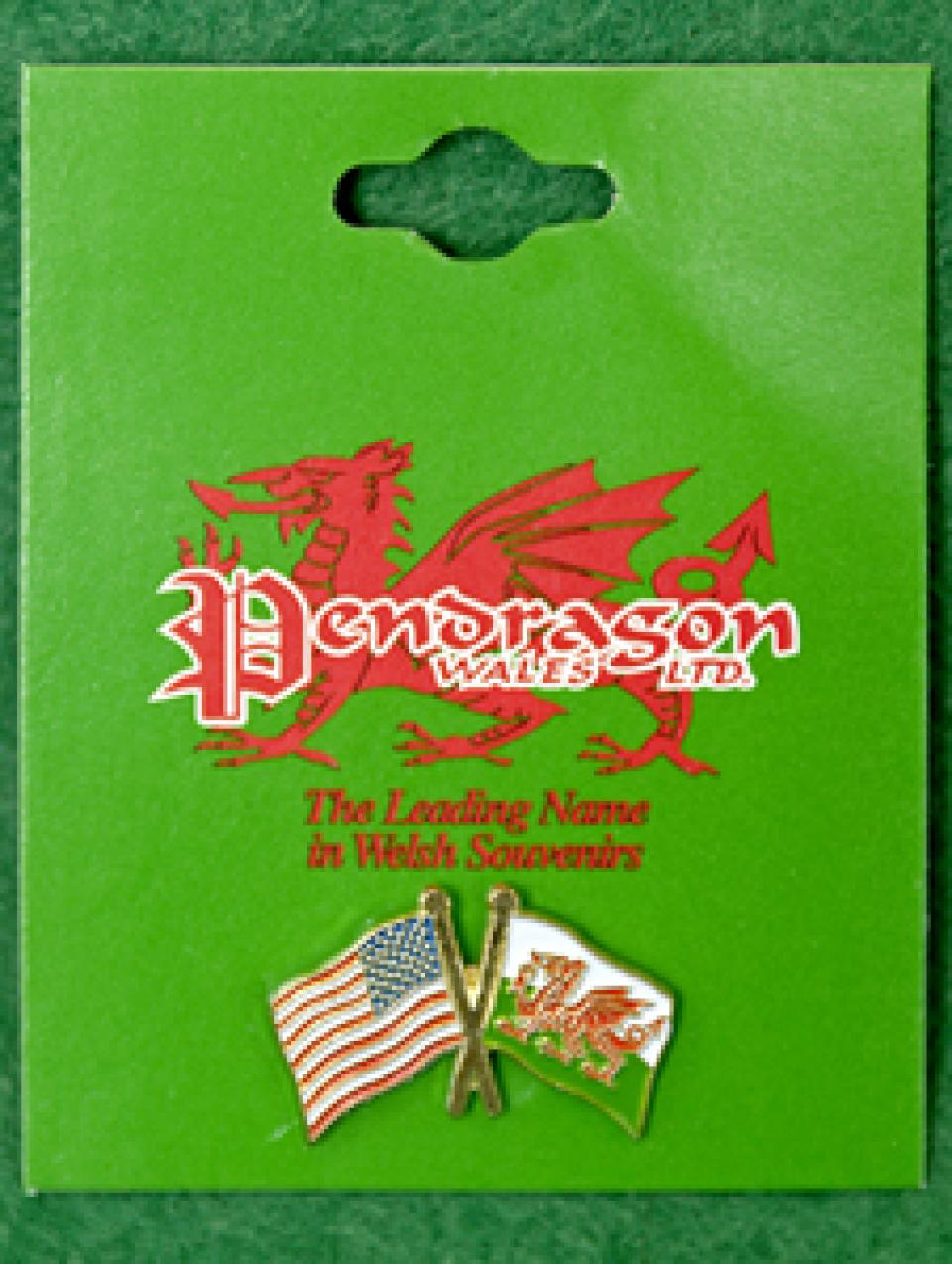 Wales/USA Pin Badge