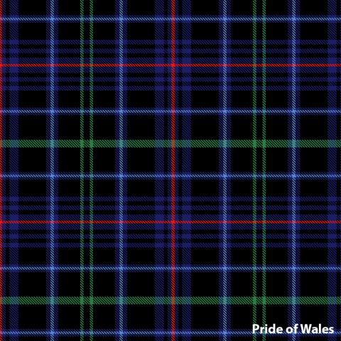 Pride of Wales (National) image